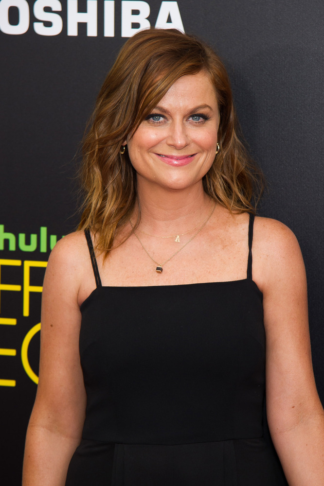 Amy Poehler   Charles Sykes/Invision/AP
