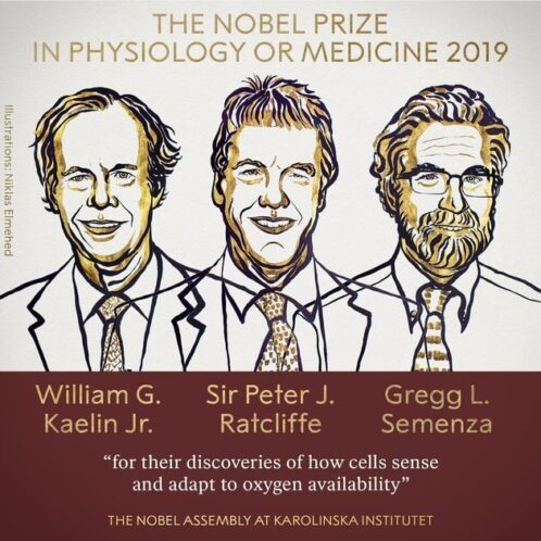 Nobel Prize Winners 2019